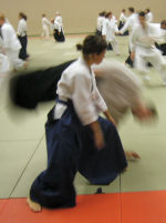 markelo2005